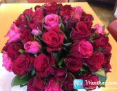 wt-bouquet-flowers-2